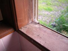 窓枠の汚れ・左側