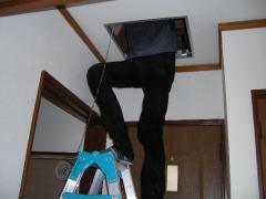 脚立に上がって天井裏を点検中
